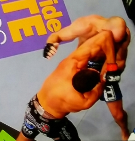 Winning Elbows by Alan Jouban UFC 184